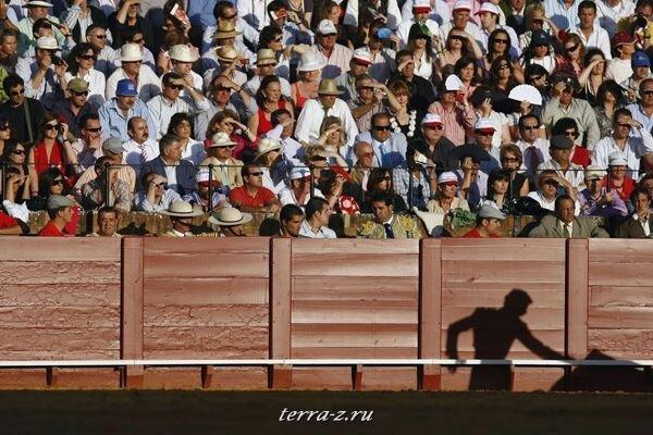 Лучшие фотографии агенства REUTERS за 2009 год