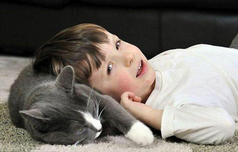 Кот Билли: лучший друг и няня для больного мальчика (Шотландия)