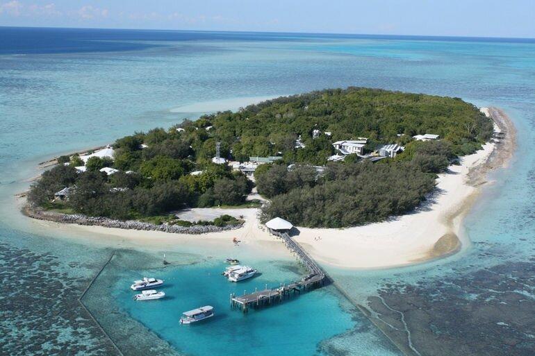 Остров Херон: мир экзотических животных и незабываемого отдыха (Австралия)