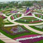 park-tsvetov-al-ain-paradise-v-oae (1)