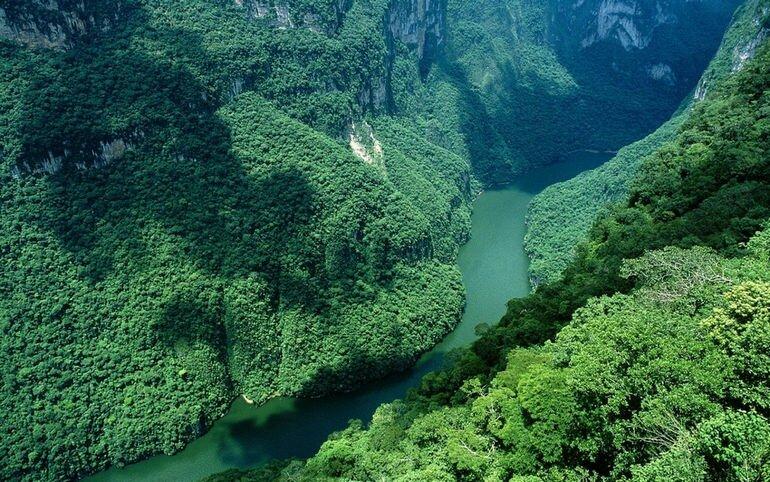 Река Амазонка: вечная загадка и непревзойденная красота (Южная Америка)