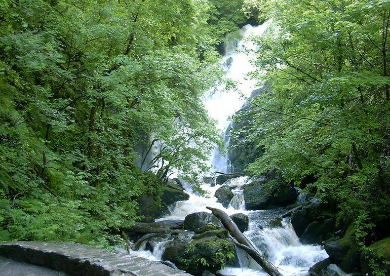Парк Килларни: уникальной красоты уголок нашей планеты (Ирландия)