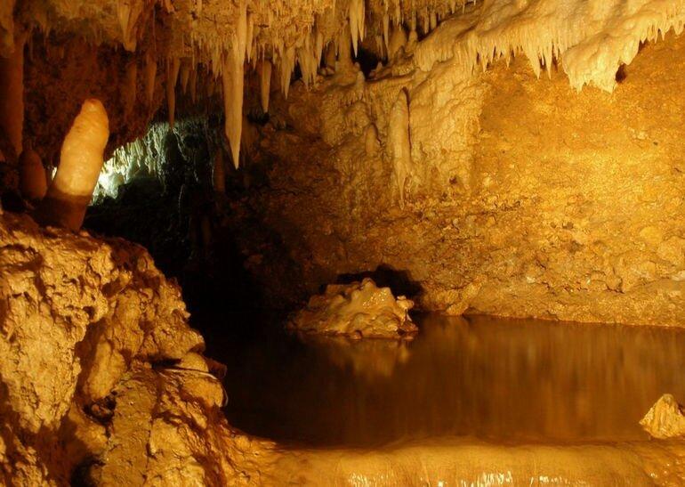 Пещеры Харрисона: добро пожаловать в подземный мир Барбадоса
