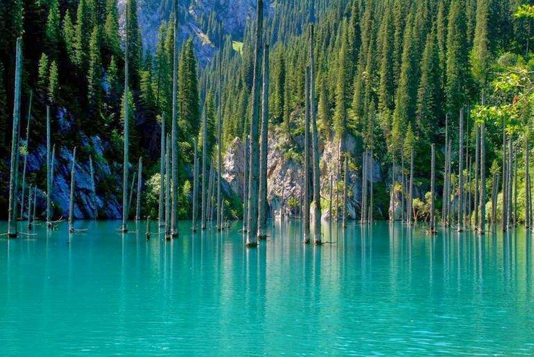 Озеро Каинды: одно из природных чудес Казахстана