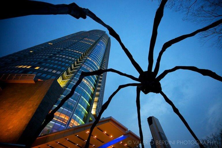 «Маман»: огромный паук у Национальной галереи Канады