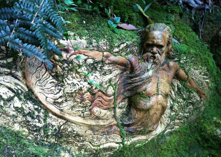 Заповедник Уильяма Рикеттса: призыв к единению с природой (Австралия)