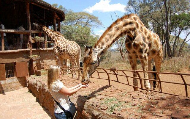 Кенийский центр жирафов